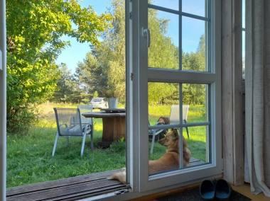 Vasaros veranda. Rūtos Oginskaitės nuotrauka