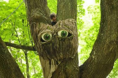 Medis atsimerkia ir prabyla aktorės Aušros Bakanaitės dėka. Rengėjų archyvo nuotrauka