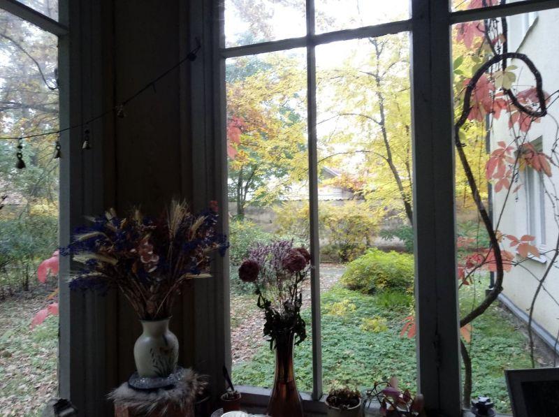 Lapkričio veranda. Rūtos Oginskaitės nuotrauka
