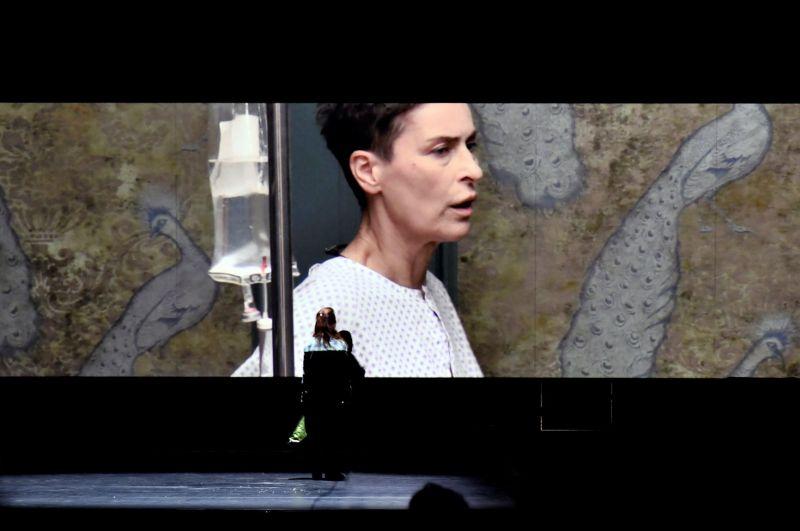 "Scena iš spektaklio ""Vyšnių sodas"", režisierė Yana Ross (Schauspielhaus Zürich). Video projekcijoje - aktorė Danuta Stenka (Ranevskaja). Zoé Aubry nuotrauka"